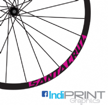SantaCruz Block Rim decals